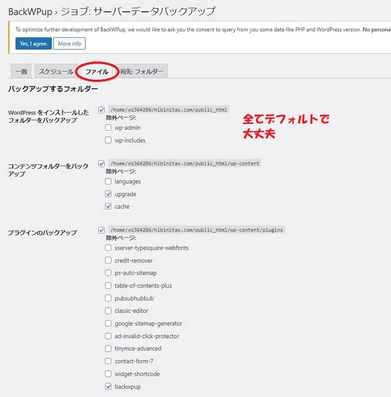 サーバーファイル-ファイル設定